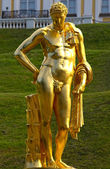 Golden statue of a naked man in Peterhof — Stock Photo