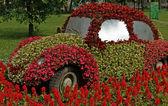 Parkta Blooming araba — Stok fotoğraf