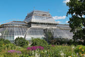Glass building in the Botanical Gardens in Petersburg — Stock Photo