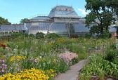 Botanical Gardens in Petersburg — Stock Photo