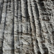 Stock Photo: Striped stone rock