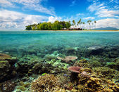 Beautiful tropical Coral Island — Stock Photo