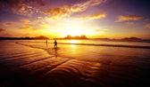 Cacciatori di sole — Foto Stock