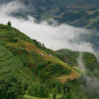 Stock Photo: Foggy morning in the mountains of Sapa
