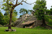 Girl explores archaeological structure in the ancient Mayan city — Foto de Stock