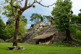 Fille explore une structure archéologique dans l'ancienne ville maya — Photo