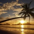 Beautiful sunset on the background of the islands with palm tree — Stock Photo