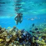 Underwater adventure woman on coral reef — Stock Photo