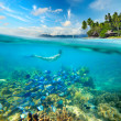 Woman swims around a beautiful coral reef surrounded by a multit — Stockfoto