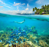 Woman swims around a beautiful coral reef surrounded by a multit — Stock Photo