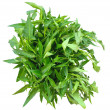 Stockfoto: Bunch of fresh spinach on top of white