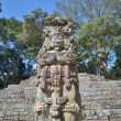 Pyramid in the ancient Mayan city of Copan in Honduras. — Stock Photo