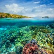 Foto Stock: Beautiful Coral reef on background of cloudy sky and volcano.