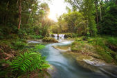 Deep forest waterfall  National Park — Stock Photo