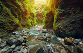 Sunset over the canyon in the jungle — Stock Photo