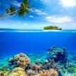 Beautiful Coral Reef on the background of a small island — Stock Photo #47105617