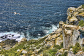Cliff on Cies Islands — Stock Photo