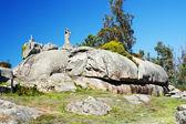 Ofen Rock Sicht auf Arousa island — Stockfoto