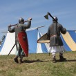 Medieval warriors — Stock Photo #12259637