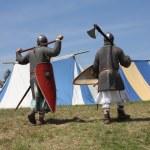 Medieval warriors — Stock Photo #12259637