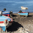 Old Boats — Stock Photo #12384479