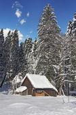 Hut in snow — Stock Photo