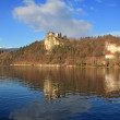 Stock Photo: Bled Castle4