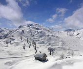 Winter in Vogel — Stock Photo