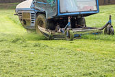 Mowing grass — Stock Photo