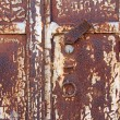 Rusty door — Stock Photo #31121525