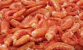 Shrimp tails — Stock Photo