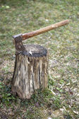 Ax in a log  — Stock Photo
