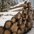 Lumber in winter — Stock Photo