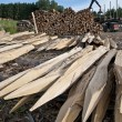 Pile of wooden stakes — Stock Photo #12440268