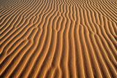 Sand dune, African desert, close-up — Stock Photo
