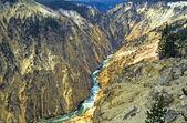 Yellowstone National Park, Yellowstone River — Stock Photo