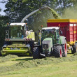 Stock Photo: Haymaking, forage harvester
