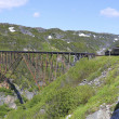Old railway bridge and train — Stockfoto #14861319