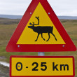 Caribou crossing warning sign — Stock Photo