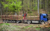 Lumber transport — Stockfoto
