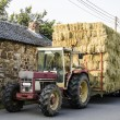 Hay, transport with tractor and hay cart — Stock Photo