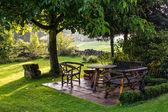 Yağmur sonra bahçe — Stok fotoğraf