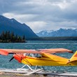 Float plane on a lake — Stock Photo
