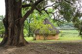 African round hut — Stock Photo