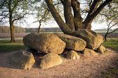 Megalithic tomb stone grave — Stock Photo