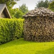 Round woodpile — Stock Photo #47491883
