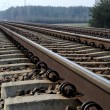 Rail Road Tracks — Stock Photo #13198653