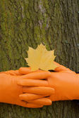 To lock hands, Orange glove, green tree, yellow leaf, autumn — Stock Photo