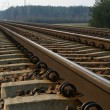 Royalty-Free Stock Photo: Rail Road Tracks