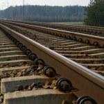 Rail Road Tracks — Stock Photo